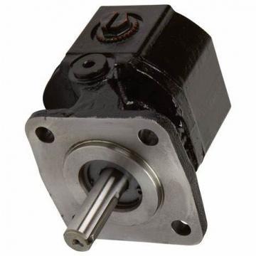 Galtech Hydraulique Gear Pompe , Groupe 1, Bsp Ports, 1:8 Conique, 4 Vis Bride